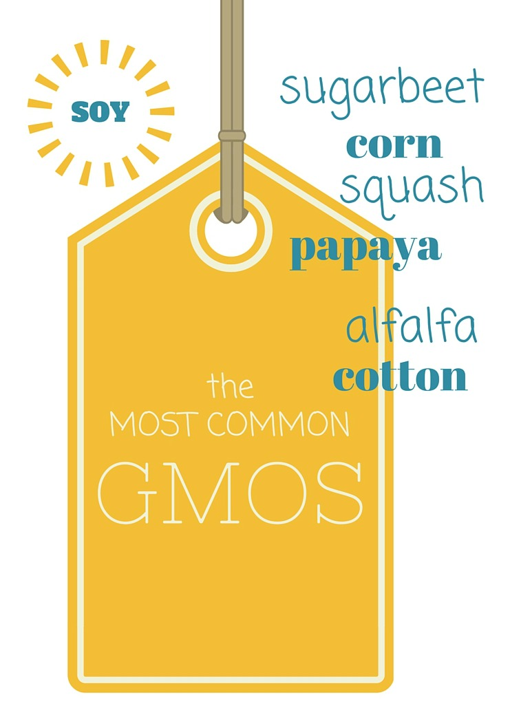 GMO vs  Organic: What's the Difference? - 5thBranch