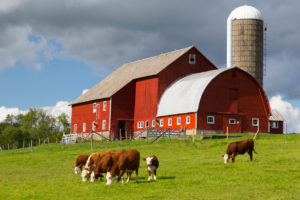 How To Find A Local, Organic Farm Near You