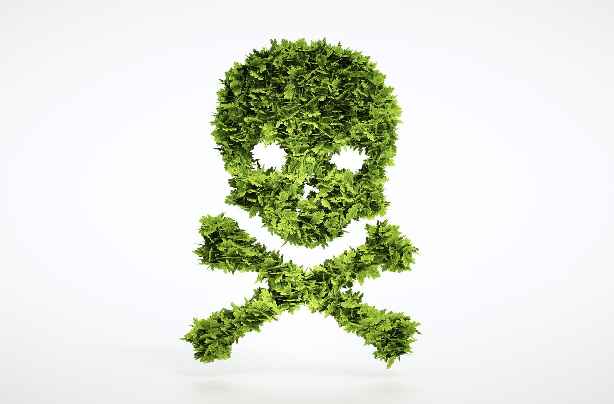 Monsanto's Roundup/Glyphosate